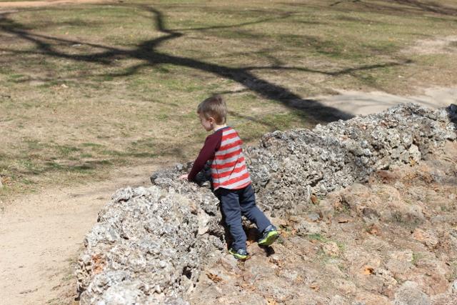 Walking with Cake: Rhys exploring