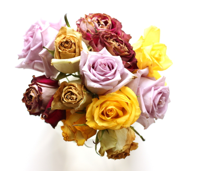 Walking with Cake: Rose bouquet