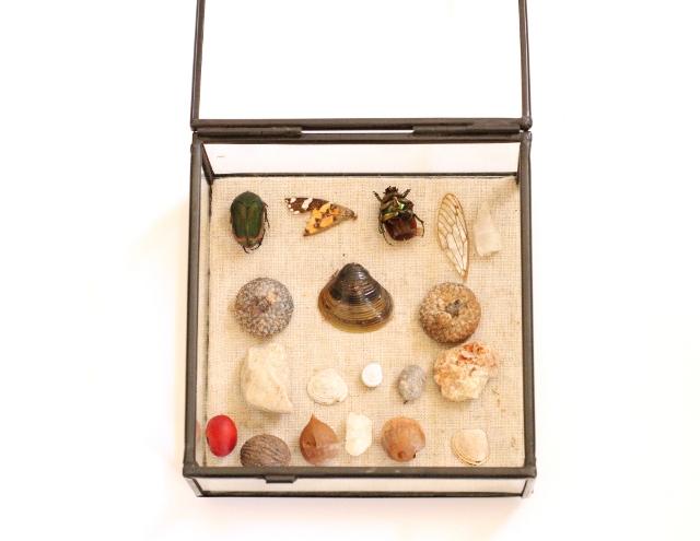 Walking with Cake: Treasure Box Vignette
