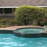 (Our neighbor's pool.)