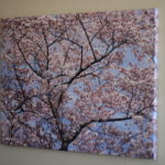 (This beautiful print by Photowall brightens up our narrow hallway.)