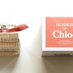(Roses De Chloe.)