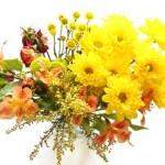 (Fall flowers.)