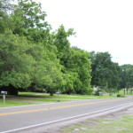 (A country road in Elgin from our drive last weekend, in between storms.)