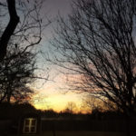 (The sunrise on Christmas morning. I snapped this when I took Marnie out first thing.)